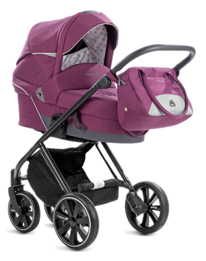 Polaris City Italian Plum